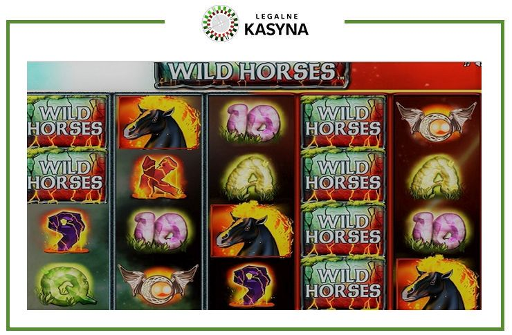 automat wild horses